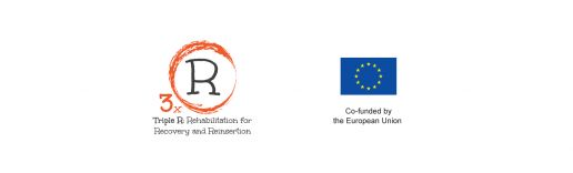 Read more: Project initiatives in Vienna and in Brussels